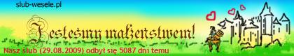 http://s1.suwaczek.com/20090829010113.png