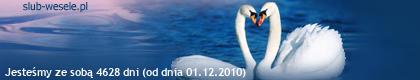 http://s1.suwaczek.com/201012013337.png