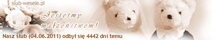 http://s1.suwaczek.com/20110604580113.png